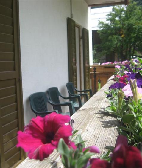 Ferienwohnungen Lezuo Iris
