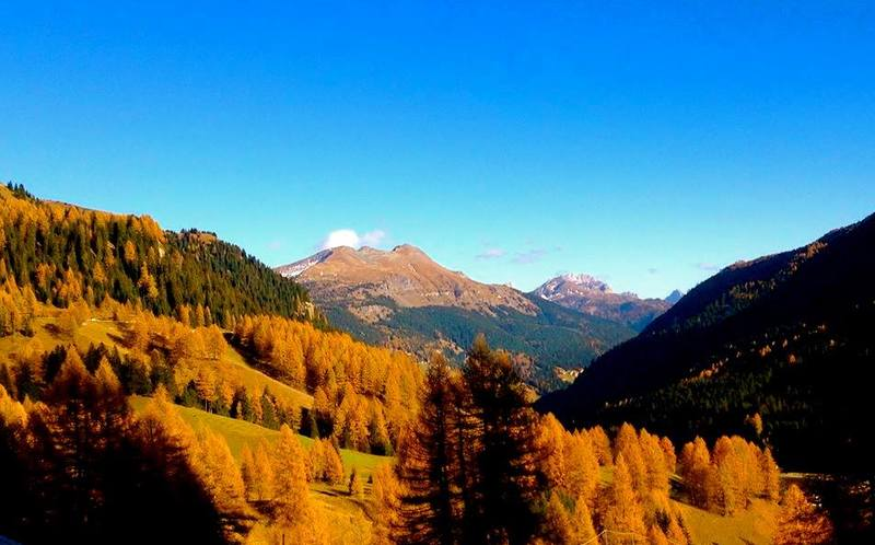 Cuddles & Foliage in the Dolomites