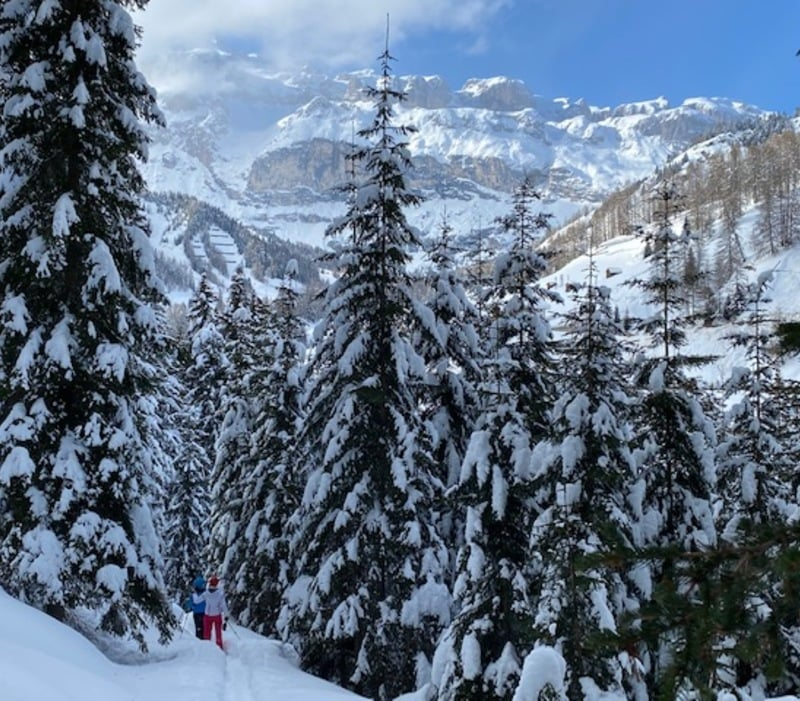 Salvan Trail