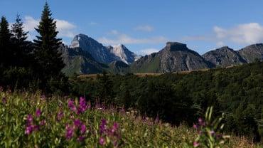 Passo Campolongo - Hochplateau Cherz